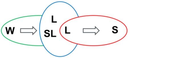 """Auf der linken Seite befindet sich eine grüne horizontale Ellipse, welche mit einem """"W"""" in ihrer linken Ecke gekennzeichnet ist. Ein Pfeil in dieser Ellipse schließt sich an das """"W"""" an und deutet auf die folgende mittlere vertikale blaue Ellipse, welche in die grüne Ellipse hineinragt. Die sich in der Mitte befindende vertikale blaue Ellipse trägt auf ihrer Oberseite ein """"L"""" und ein darunter liegendes """"SL"""" in sich. Überschnitten wird die blaue Ellipse von der rechts angeordneten roten horizontalen Ellipse. Diese enthält in ihrer linken Ecke ein """"L"""" und einen sich anschließenden Pfeil, welcher auf ein """"S"""" in der rechten Ecke der roten Ellipse zeigt."""